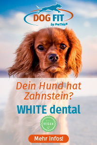 DOG FIT von PreThis