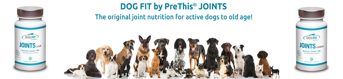 DOG FIT by PreThis JOINTS with Glucosamine