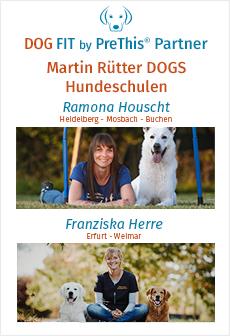 MARTIN RÜTTER DOGS Heidelberg - Mosbach - Buchen