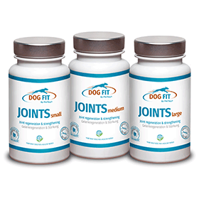 DOG FIT by PreThis JOINTS