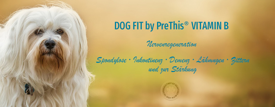 DOG FIT by PreThis VITAMIN B für das Nervensystem