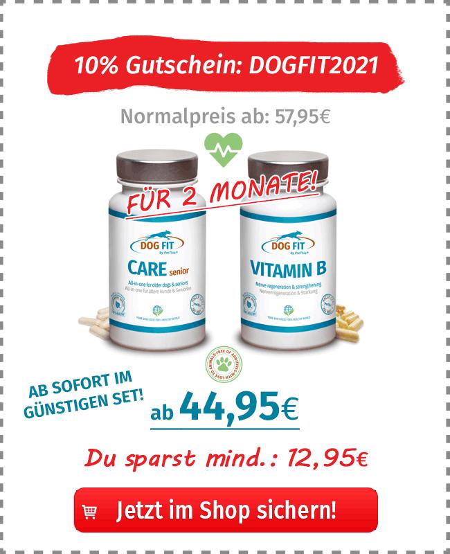 DOG FIT by PreThis Care senior für Hunde