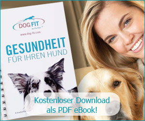 DOG FIT by PreThis Buch - Kostenlos zum Download