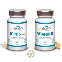 DOG FIT by PreThis JOINTs und VITAMIN B