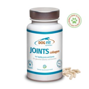 DOG FIT by PreThis JOINTS collagen