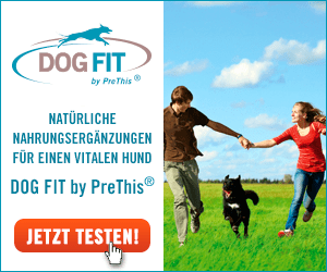 DOG FIT by PreThis Shop