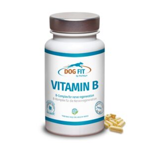 DOG FIT by PreThis VITAMIN B