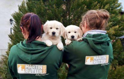 Martin Rütter DOGS - Franziska Herre
