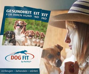 DOG FIT by PreThis - Gesundheit für den Hund