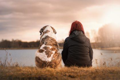 Hund-Mensch