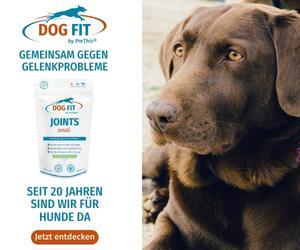 DOG FIT by PreThis® JOINTS für die Gelenke