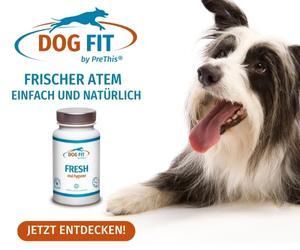 DOG FIT by PreThis® FRESH gegen Mundgeruch beim Hund