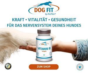 DOG FIT by PreThis® VITAMIN-B Komplex für Hunde mit Nervenschwächen