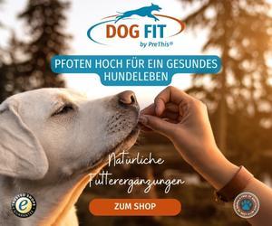 DOG FIT by PreThis - Futterergänzungen für Hunde